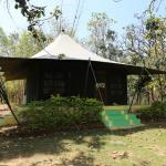 Photo of Pench Jungle Camp