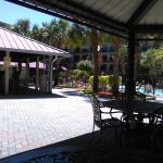 View of Tiki Bar and outdoor covered Patio