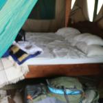 Whistling Thorn Tented Camp Foto