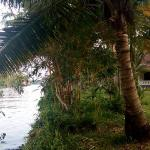 Palmgrove Lake Resort Foto