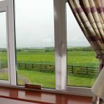 Foto di Bunratty Meadows Bed and Breakfast