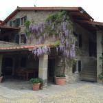 Wisteria blooming on our villa