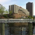 The Sheraton from the Harbour
