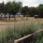 Very spacious RV Park with juniper trees and small areas of roses, wild flowers and other nice l