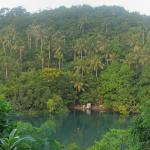Photo of Divers Lodge Lembeh