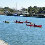 Activity along Shem Creek