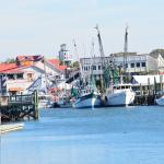 More of Shem Creek