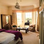 Wild Orchid Room