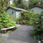 Photo de Rainforest Retreat