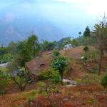 Photo de Shakti Village Walks