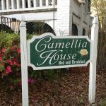 Foto di Camellia House Bed and Breakfast
