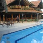 pool and bar