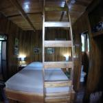 Tree Houses Hotel Costa Rica照片
