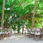 Ceremony on the sand, under the palm trees.