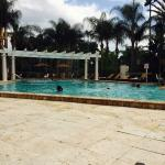 Sheraton Orlando North照片