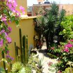 Bed & Breakfast at the Oaxaca Learning Center resmi