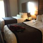 BEST WESTERN PLUS Hotel & Suites Airport South照片