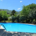 ralaxing pool surrounded by lush and peaceful gardens