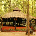 ‪Kanha Jungle Lodge‬