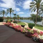 The McCormick Scottsdale resmi