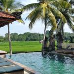 Bilde fra Green Field Hotel and Bungalows