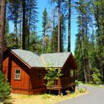 Billede af Evergreen Lodge at Yosemite