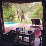 Photo de Imbali Safari Lodge