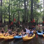 Gravity Trails - New Orleans Kayak Swamp Tours