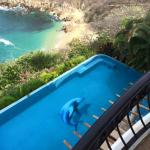 Dolphin Cove Master Suite View