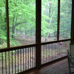 Beautiful porch overlooking the woods