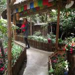 Foto de Hello Chengdu International Youth Hostel