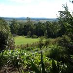 Bilde fra Wallaby Ridge Retreat
