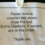 Bedding for Dummies - Apparently the shams and coverlet are not clean enough to use...