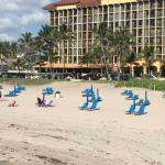 Photo of Wyndham Deerfield Beach Resort