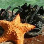 Starfish on our Tevas.  We found the fish in the water outside our room.