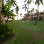 Sheraton Fiji Resort照片