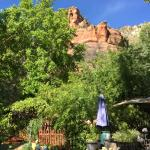 The Canyon Wren - Cabins for Two Foto