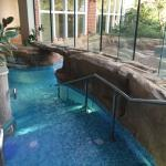 entrance to the inside/outside pool - my favourite, like being in a warm bath!