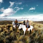 Photo de Dos Lunas Horse RIding Lodge