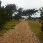 the path from the grounds to the beach