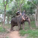 Elephant was always trying to off track. Found out latter he like bananas that grew nearby.