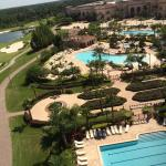 Rosen Shingle Creek Foto