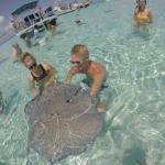 holding the stingrays