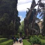 Photo de Villa d'Este