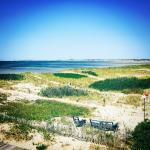 Foto de Sandbars on Cape Cod Bay