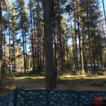 Foto di Whistlers Campground
