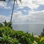 Foto van Hale Kai Hawaii Bed & Breakfast