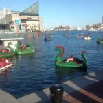 ภาพถ่ายของ Holiday Inn Baltimore-Inner Harbor