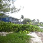 Foto de Turtle Nest Inn