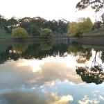 Adelaide Hills Country Cottages의 사진